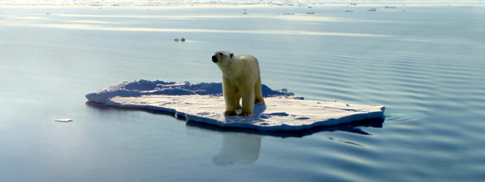Is Global Warming On Its Deathbed?