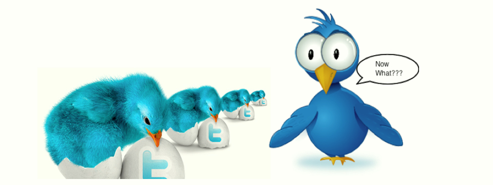 Step Two in the Twitter Journey: Twitter for Newbies 102