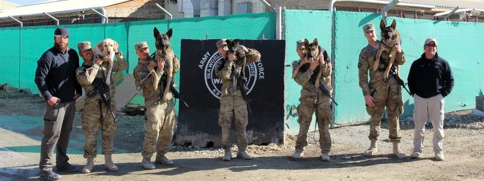 She's Not a Dog – She's a SOLDIER